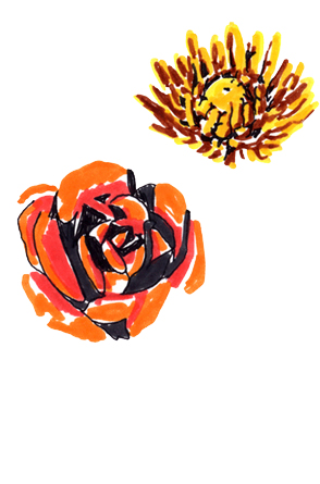 jeanne-louise-dessins-fleurs