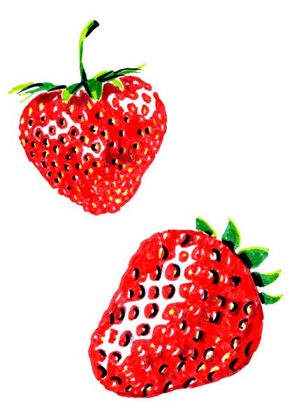 jeanne-louise-dessins-fraises