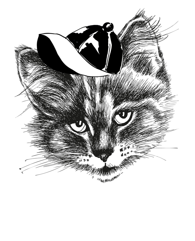 jeanne-louise-dessins-thecat